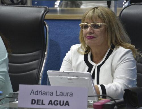"""LEGISLADORA DE JSRN ACUSA DE DELINCUENTES A LOS IMPLICADOS EN LA TOMA EN """"EL FOYEL"""""""